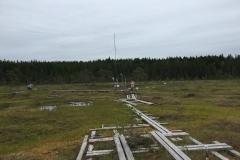 Third stop in Finland, Siikaneva mire