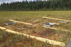 Siikaneva field site completed!